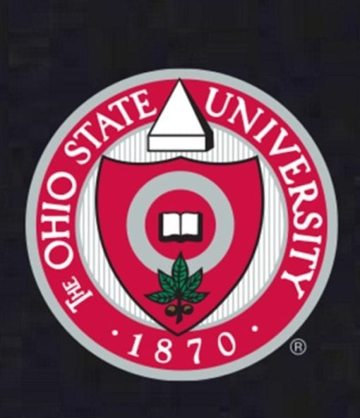 Ohio State Seal in six colors on black chair